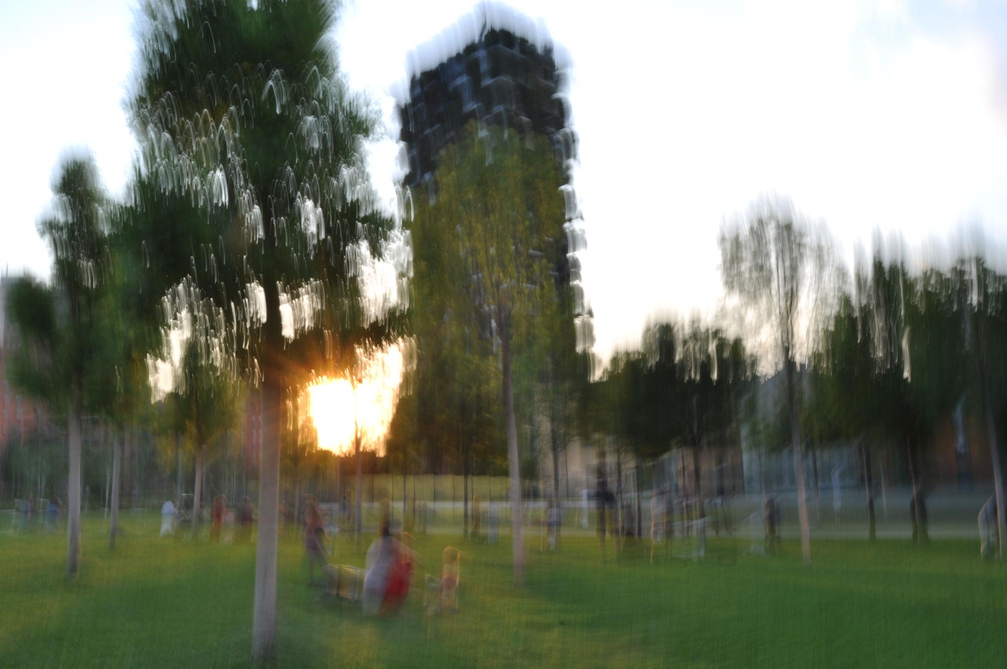 foto mosse milano bosco verticale 2020 0057b